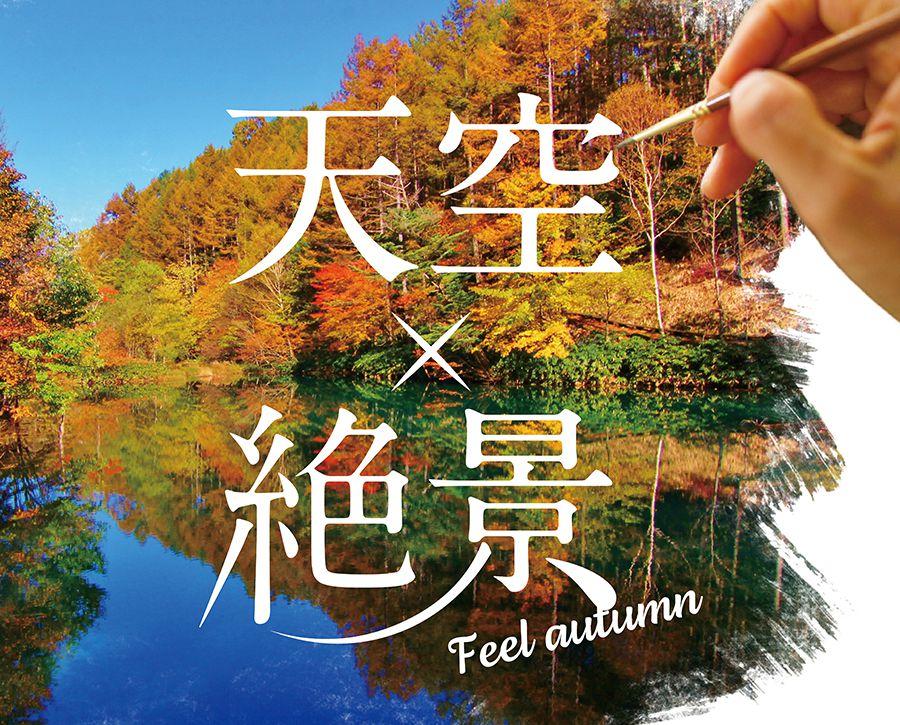 秋の富士見台高原
