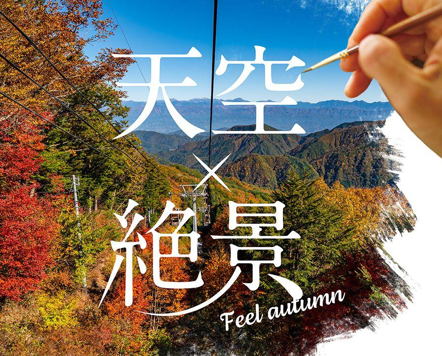 FEEL THE FALL秋の富士見台高原