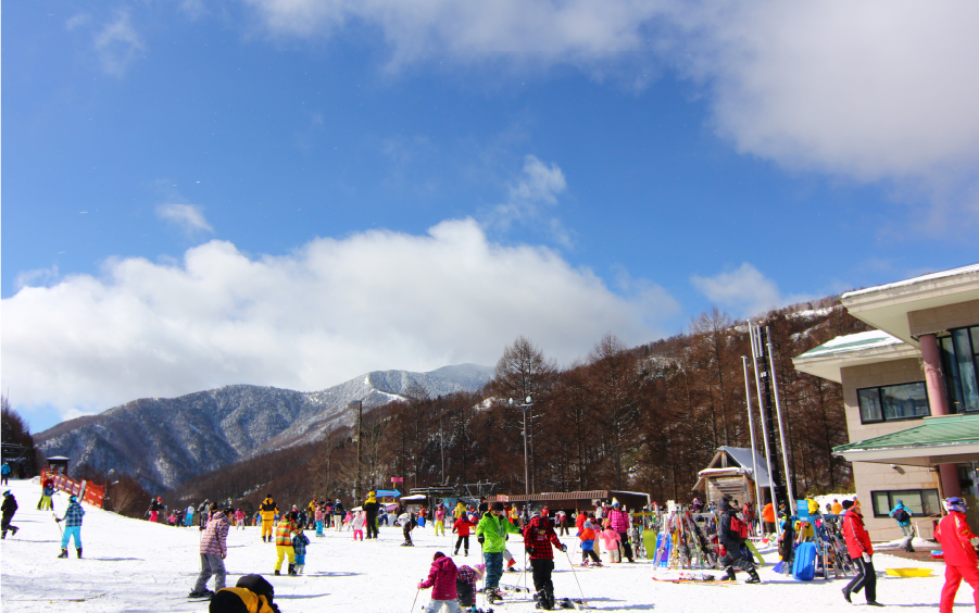 3月22日までのスキー場営業期間はCO2フリー電気で営業!