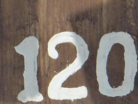CIMG0112